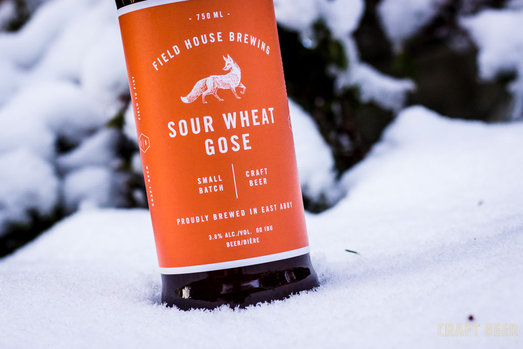 Beer of the Year Field House Brewing Sour Wheat Gose Close-up