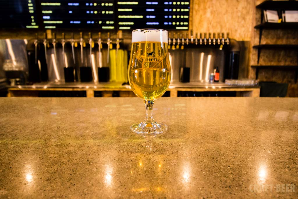 Vancouver Craft Beer Week 2017 Collaboration Brew Glass of Yellow Dog Pilsner